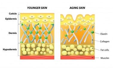 Jonge en oude huid