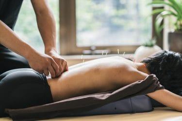 Wat houdt de opleiding TCM acupunctuur therapeut?