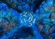 Wat betekent numerologie nine star ki?